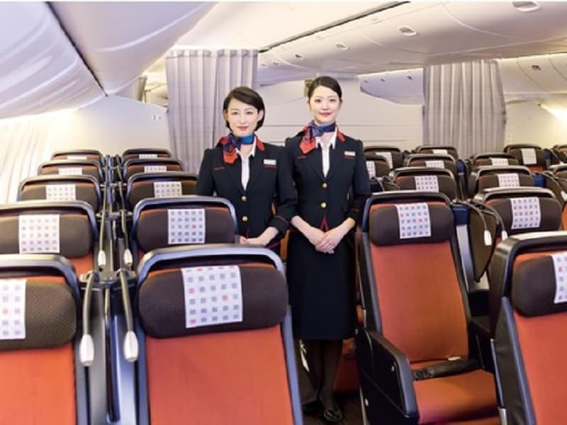 Image result for DICH VU AN UONG JAPAN AIRLINES